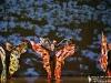 10 balet Zlatovláska